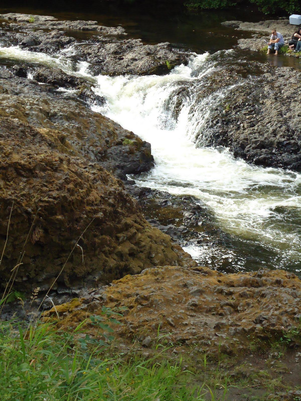 Matthew S Washington Trip Rainbow Falls State Park