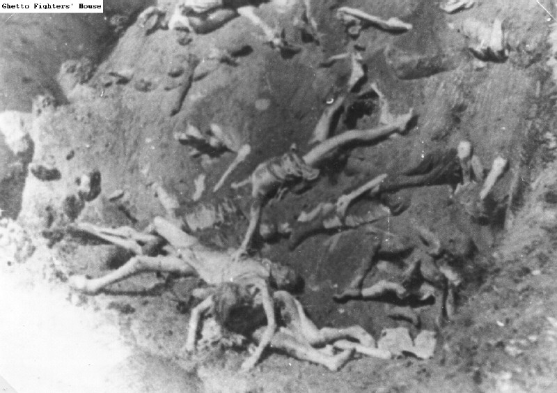 holocaust controversies mass graves and dead bodies