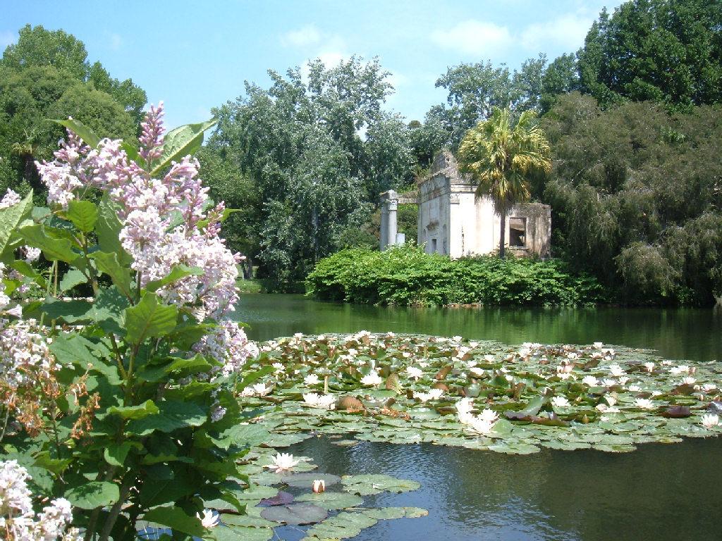 La dame des roses giardini for Giardini immagini