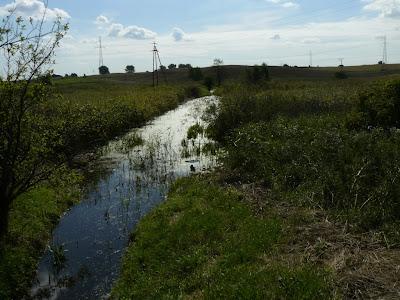Co zrobić jeśli do naszej działki przylega rów melioracyjny z zanieczyszczoną wodą?