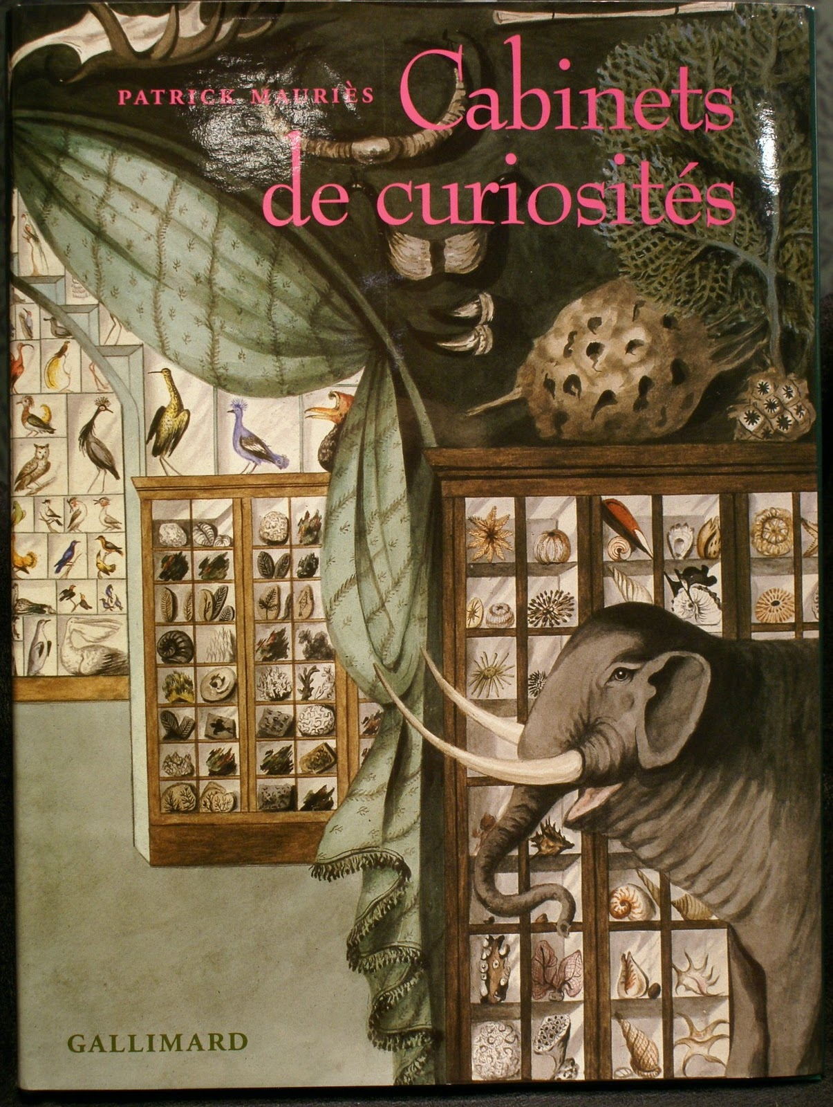 petit cabinet de curiosit s cabinets de curiosit s. Black Bedroom Furniture Sets. Home Design Ideas