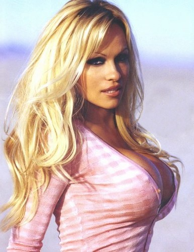Thank for sexy photos of pamela anderson useful