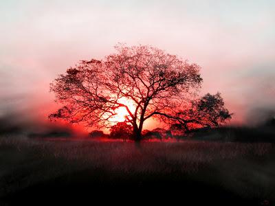 puesta-del-sol