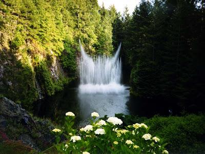 cascada-en-la-montaña-entre-arboles-y-flores