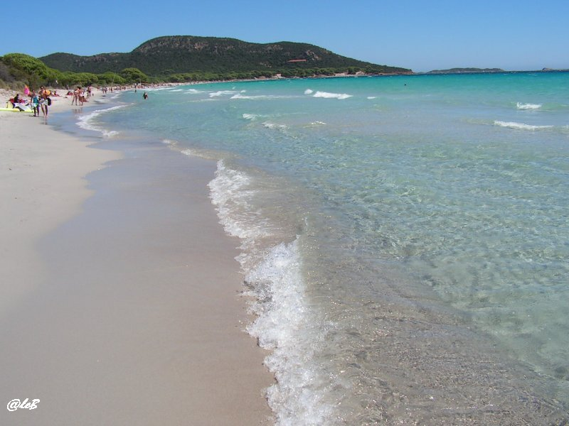 spiaggia palombaggia sardegna