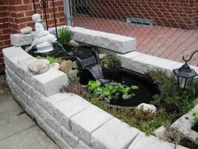 Acuarios y estanques un estanque en tu jardin for Nombre de estanque pequeno para tener peces