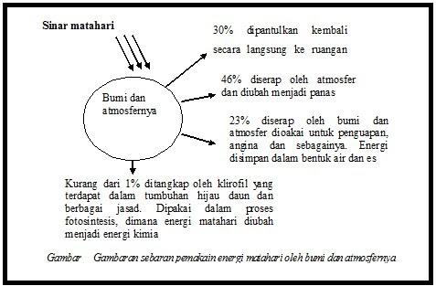 Anabolisme dan Fotosintesis