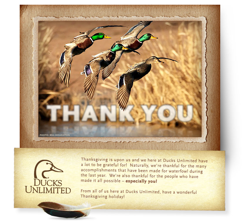 Ducks Unlimited Waterfowl Migration Map