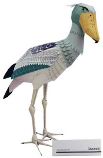 Animal Papercraft Shoebill Bird