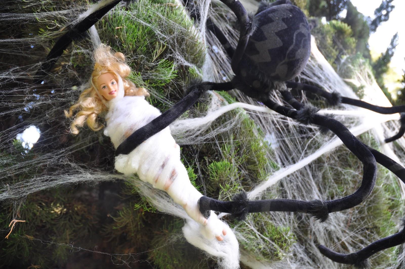 web Bondage spider trapped him