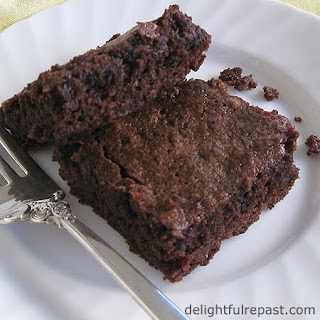 Brownies - Chew, Not Cakey, Not Gooey - The Perfect Texture / www.delightfulrepast.com