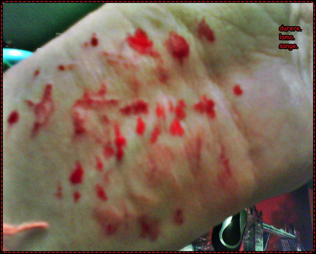 unguent dureri articulatii - preturi si oferte