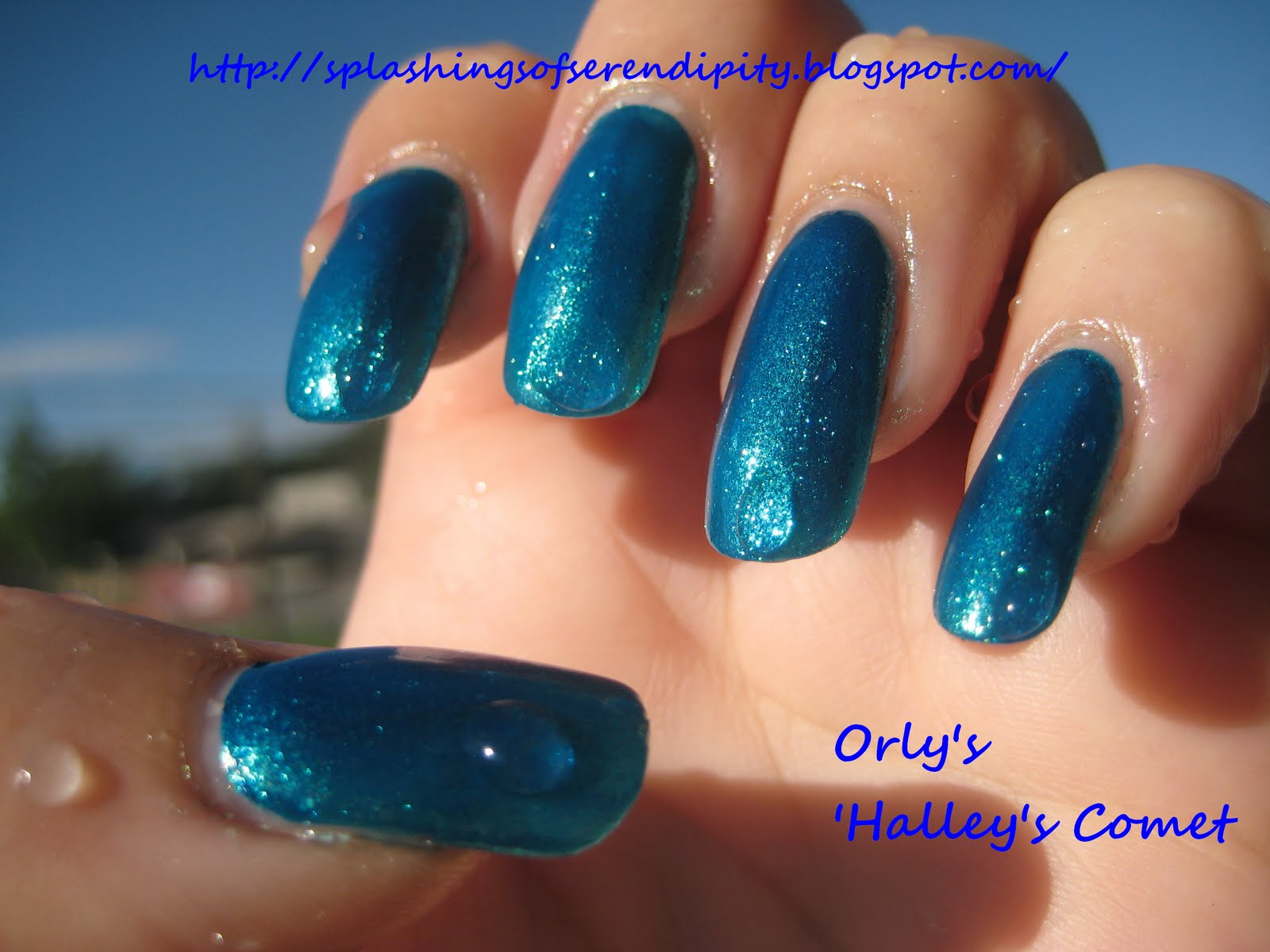 A Splash Of Serendipity Orly S Halley S Comet
