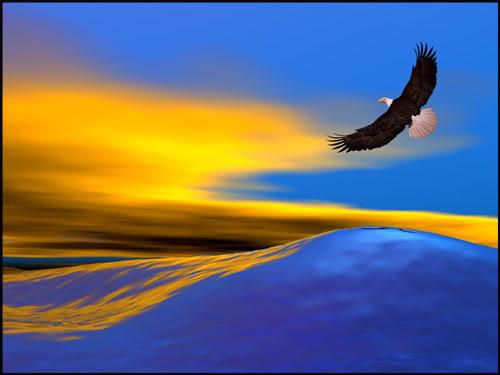 Opinión Libre Por Diego Roldan Jaramillo Si Quieres Volar