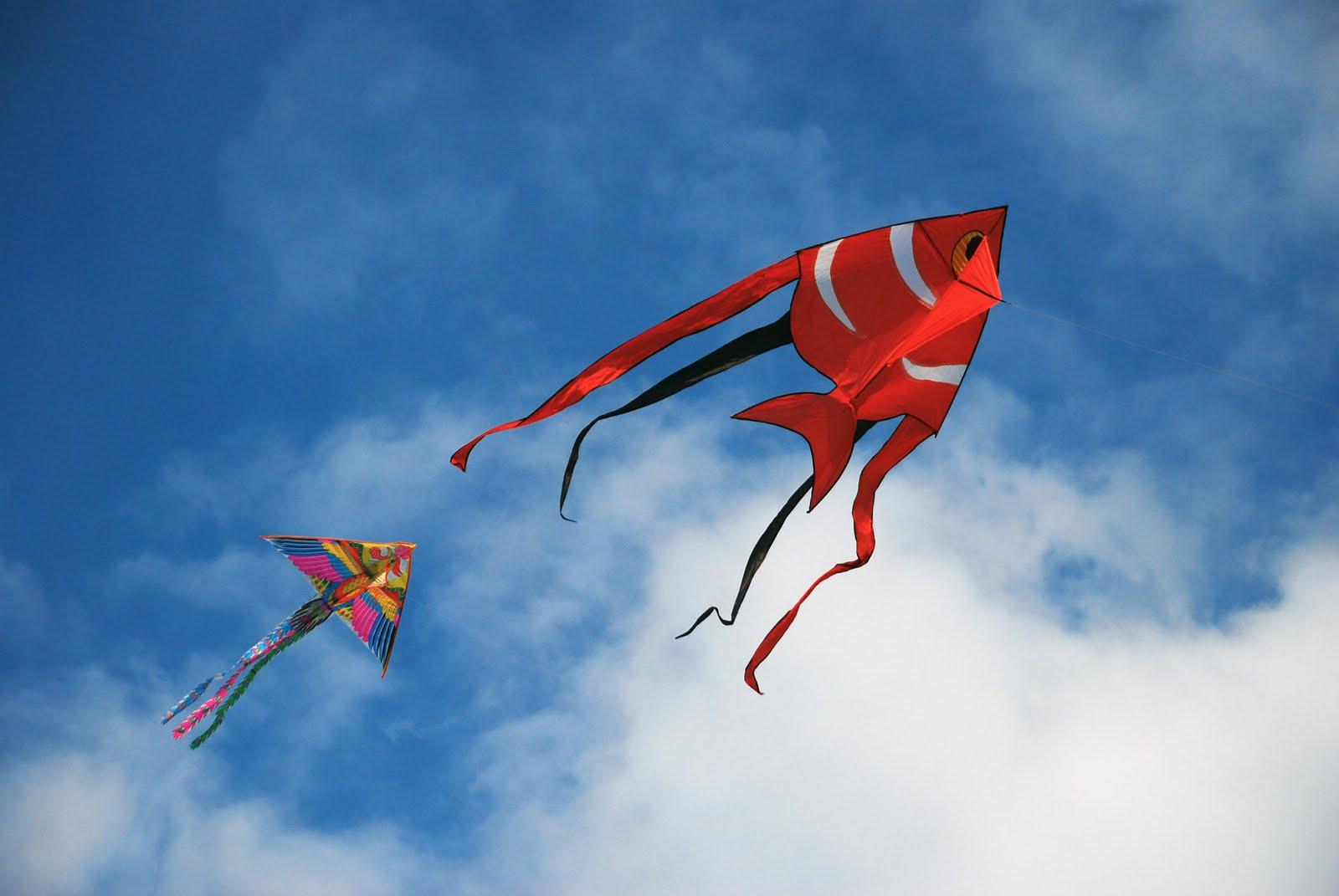 Nobody Kite Flying