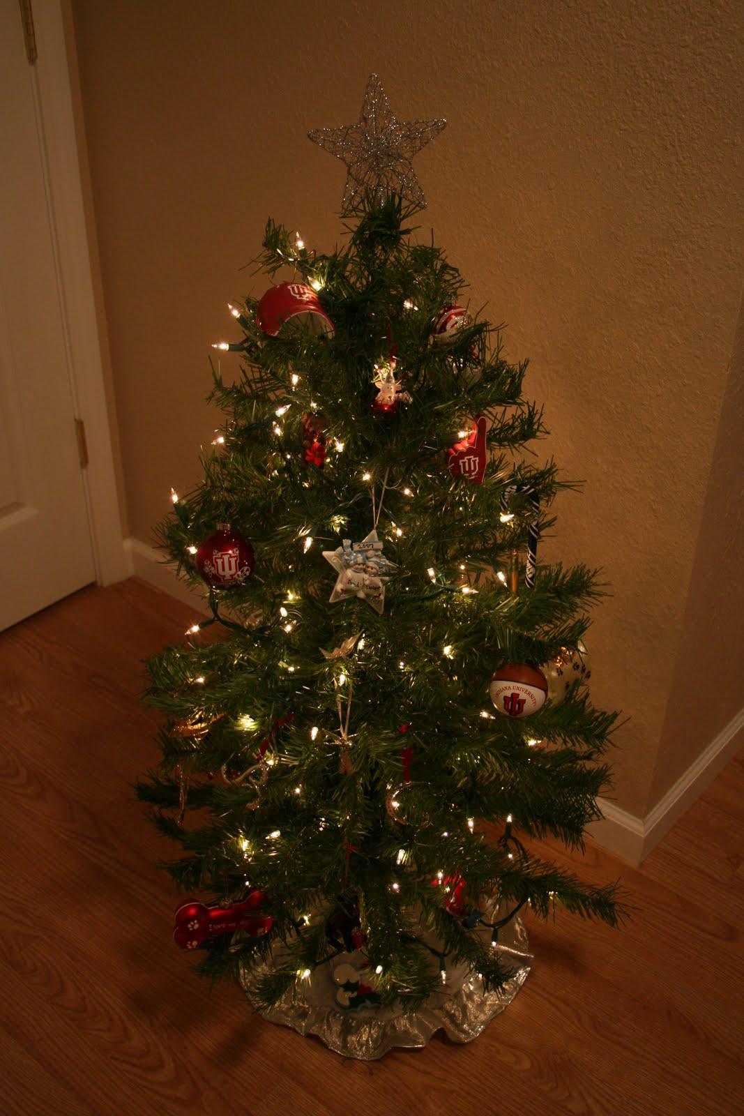 Sunday December 5 2010
