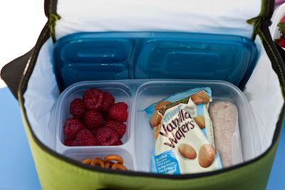 easy lunchbox tontainer