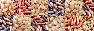 lotus foods rice image
