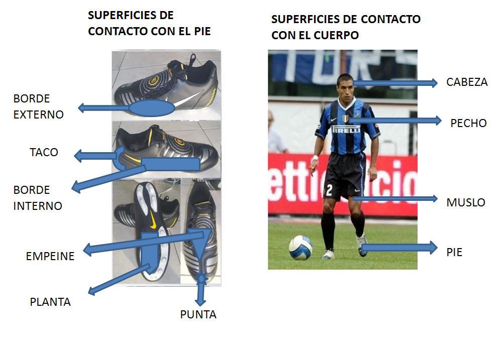 El Portero Del Fútbol Golpeó El Ejemplo Del Vector Del: Tipos De Contacto Con El Balon