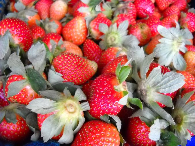 strawbery situ patengan bandung
