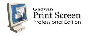 PrintScreen, Captura de Tela, Screen, Tela, Imagem, Gadwin PrintScreen