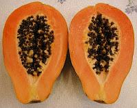 buahan tropika yg sangat  berhasiat dan gila dari sudut rawatan yg sangat luar biasa Rahsia  Betik dan B17