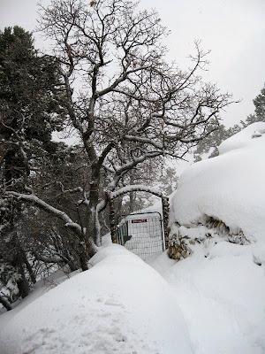 Kolb Studio residence tour gate with snow South Rim Grand Canyon National Park Arizona