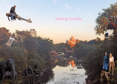 Seeing double at Disney World Florida