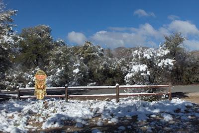 Leprachan sitting on snowy fence Yarnell AZ
