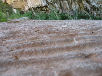 Rippled sandstone at Cliff Spring North Rim Grand Canyon National Park Arizona