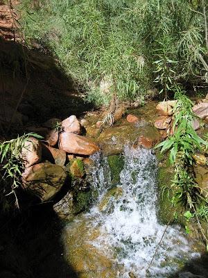 Ribbon Creek North Kaibab trail Grand Canyon National Park Arizona