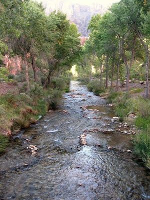 Bright Angel Creek through camp Grand Canyon National Park Arizona