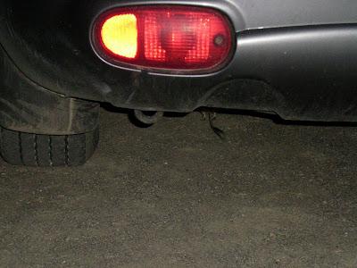 Kangaroo Rat under car Death Valley National Park California