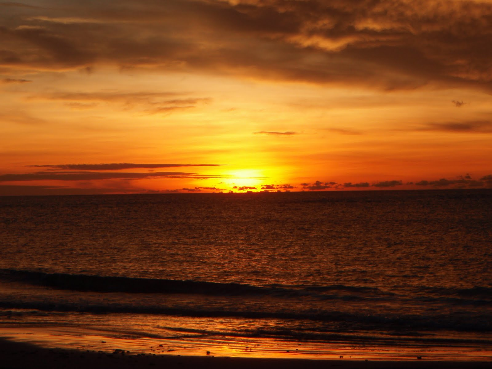 pemandangan tepi pantai waktu senja  Foto Dunia Alam