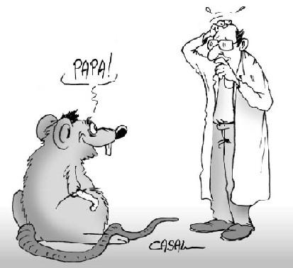 Épidémie/pandémie de Coronavirus/Covid 19 [Tome 3] - Page 35 Genetique