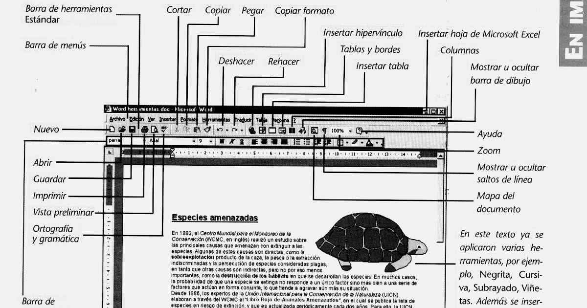 Manual de computación primaria sexto grado: Software Word