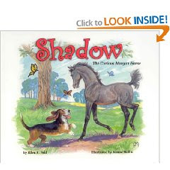 Review: Shadow The Curious Morgan Horse