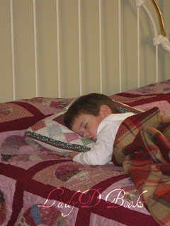 Grandson Napping: LadyD Books