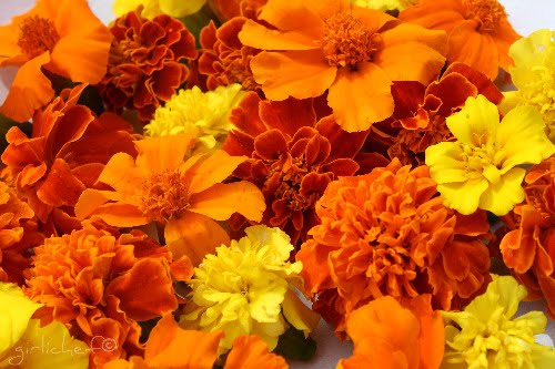 Marigold Corn Pone and Marigold Honey inspired by Garden Spells     Here are a just a few ways that marigolds are used throughout different  cultures   In the West country of England these flowers are known as  The  Drunkards