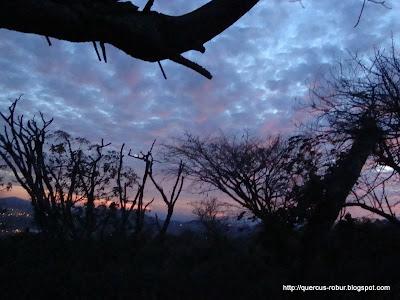 Anochecer en el Cerro de la Mesa