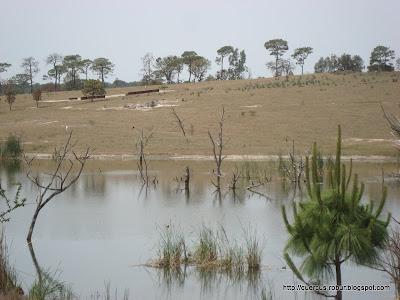 Vista parcial de una presa de agua