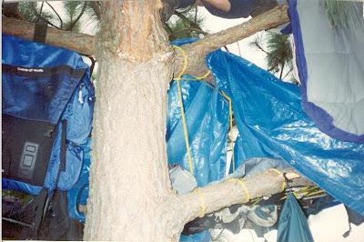 Refugio aéreo - Durmiendo al aire libre - Salto del Nogal, Tapalpa