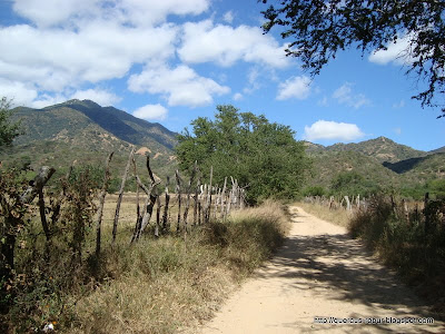 Cerro Grande de Ameca
