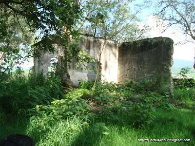 Ruinas a pocos metros de la estación de tren en San Marcos