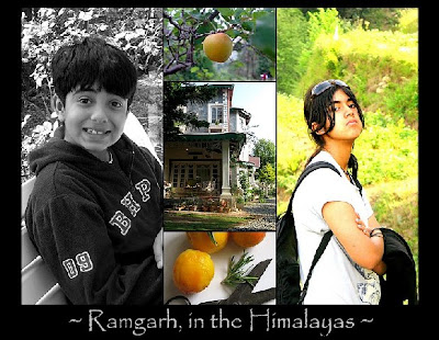 Collages83 FRUITS IN THE HIMALAYAS...& PEACH-ROSEMARY JAM RECIPE