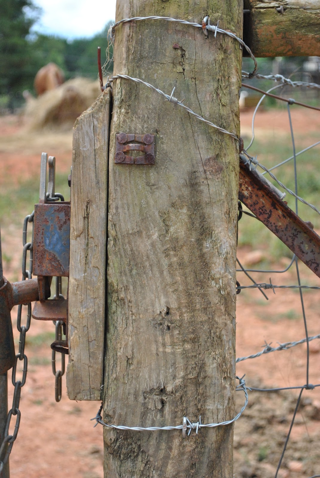 FREE TEXTURE SITE: Free Wood Post Texture