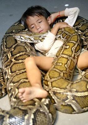 Φίδι ξάπλωνε κάθετα δίπλα σε μωρό με σκοπό να το φάει!!