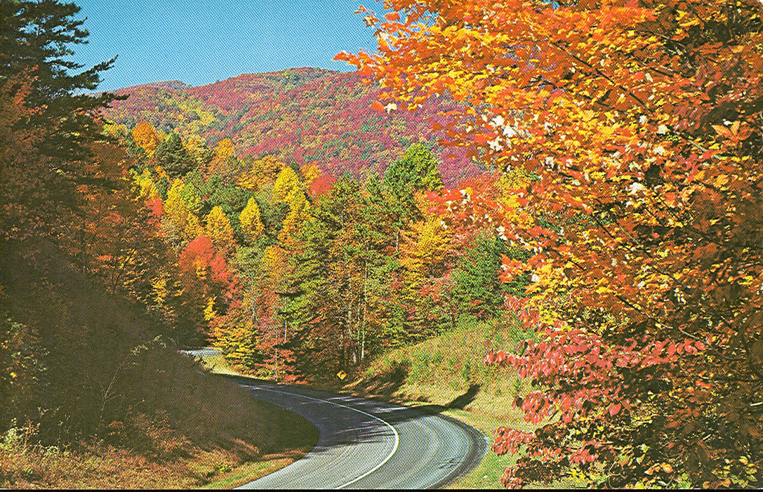 Vintage Travel Postcards: Great Smoky Mountains National Park