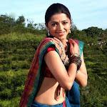 Bhoomika Chawla Hot Pictures
