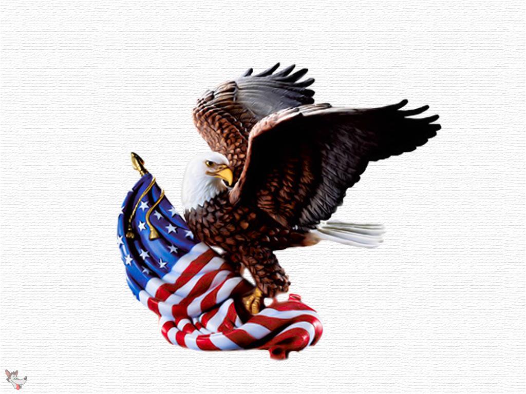 Patriotic Wallpaper Usa Flag Eagle: WALLPAPERS: AMERICAN FLAG